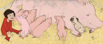 Where Do Pigs Sleep?