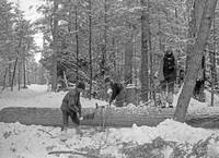 5148-michigan-logging-cutting-1880to1890