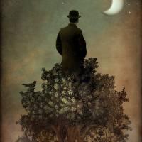 """Man in tree"" by Catrin-Stein"