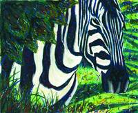 Zebra in Hiding