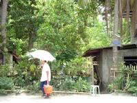 woman with umbrella, lopez, philippines
