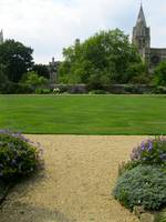 Christ Church grounds