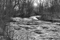 St Vrain River in Black and White