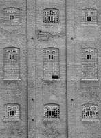 Sugar Mill Broken Windows BW