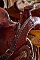Saddle in tack room