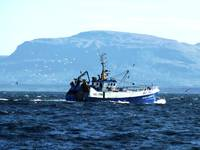 Donegal Trawler