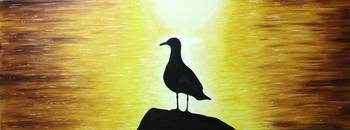 Seagull on the sunset