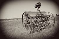 Old Farm Equipment: Texas Hill Country