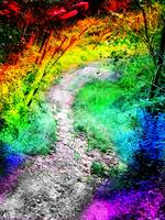 Colorful Path