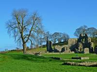 Inch Abbey in Spring