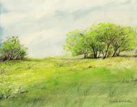 Green Meadow in the Spring by Giorgetta Bell McRee