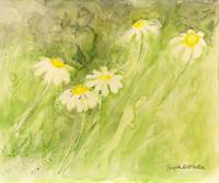 Daisies in the Breeze by Giorgetta Bell McRee
