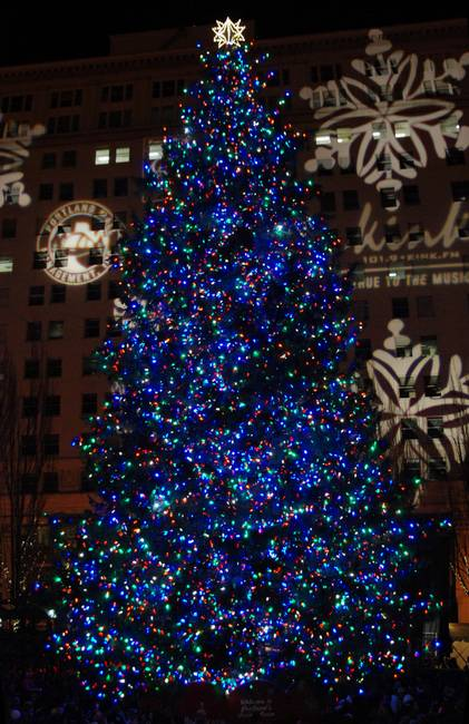 Portland Christmas Tree.Portland Pioneer Courthouse Square Christmas Tree By William Buse