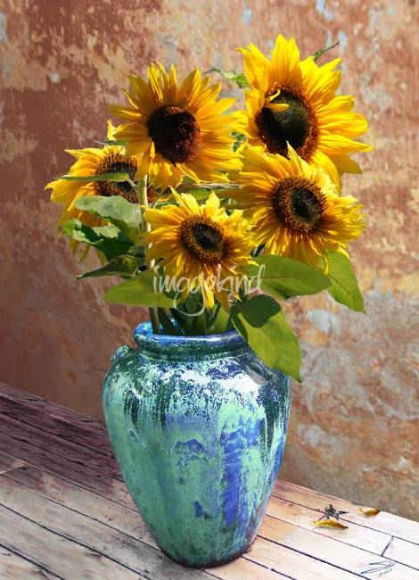 Sunflowers In Blue Green Vase By IM Spadecaller