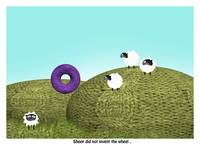 Sheep Fact 3