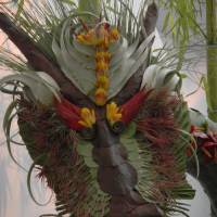 DragonandBamboo by Barb Tallberg