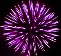 Purple Fire Art Flower Burst