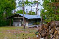 Hurricane Log by Wendy Ritch
