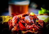 Louisiana Crawfish...YUM!  (and beer)