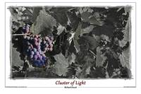 Cluster of Light