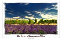 The Corner of Lavender and Vine