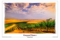Vineyard Dawn 1