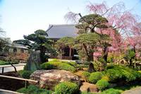 Shrine and Japanese Garden