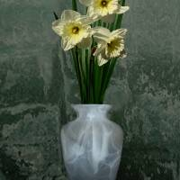 Three Daffodil Blossoms in a Vase by I.M. Spadecaller