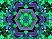 Hexagonal Purple & Green Kaleidoscope Mandala