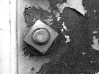 Rusty Bolt B&W