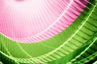 Pink and Green Abstract Wall Art
