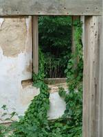 Old Farmhouse Window