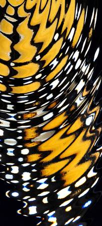 Monarch Butterfly Wing Abstract No1