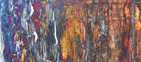 Old Ash Tree Stump Abstract