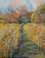 Path in the Meadow