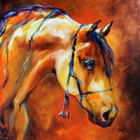 SHOWTIME ARABIAN by Marcia Baldwin
