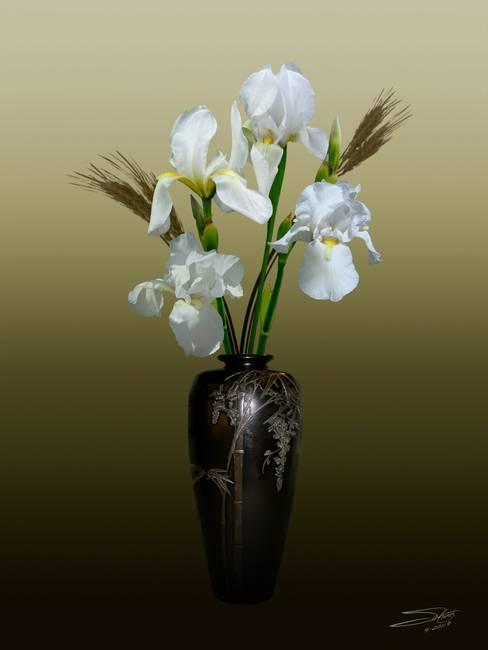 White Iris In Japanese Bamboo Vase By Im Spadecaller