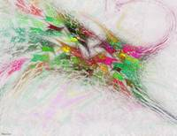 Flowering Graffitti Abstract