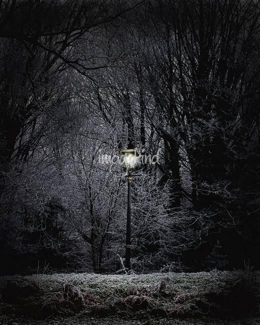 Stunning Narnia Artwork For Sale On Fine Art Prints