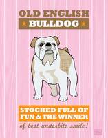 Bulldog Pink/Orange