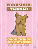 Yorkshire Terrier Pink/Orange