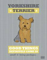 Yorkshire Terrier Gray/Gold