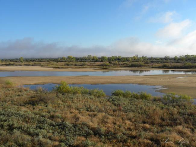 CLEARING Fog at Cimarron River in NW Oklahoma