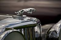 Jaguar Hood Ornament 1