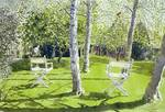 Silver Birches by Lucy Willis