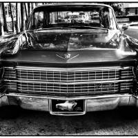 1963 Cadillac by Barbara Wilford Gentry