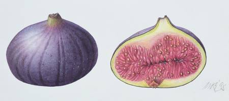 Figs by Margaret Ann Eden