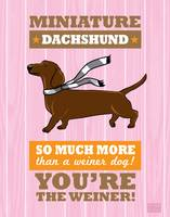 Dachshund Pink/Orange