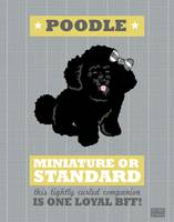 Poodle2 Gray/Gold