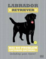 Labrador Retriever2 Gray/Gold